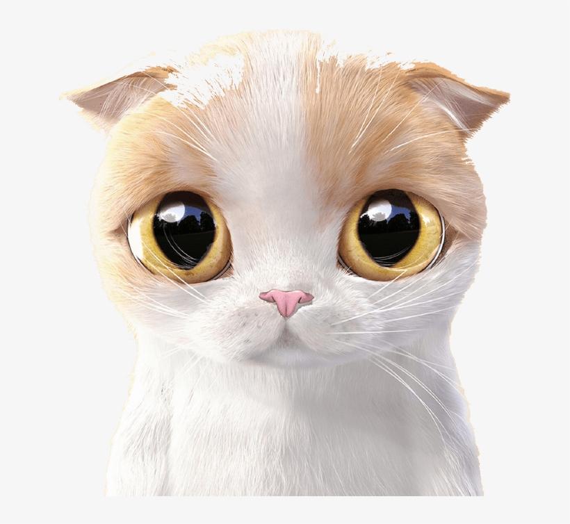 Siamese Cat Kitten Cuteness Mobile Phone Wallpaper Cute Cartoon Cat Free Transparent Png Download Pngkey