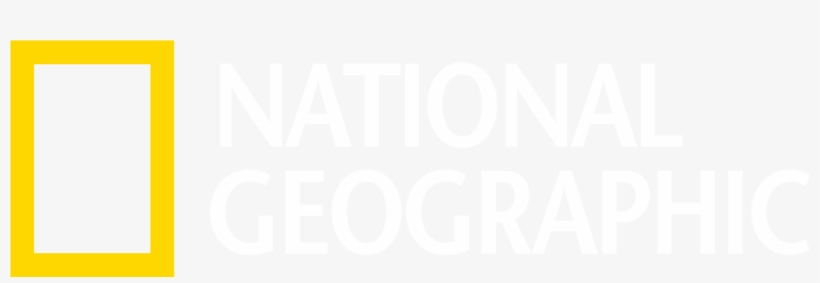Ng Logo White - National Geographic Logo Hd, transparent png #5404050