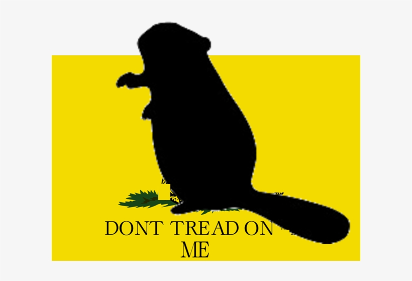 Texas - Dont Tread On Me Flag, transparent png #5437954