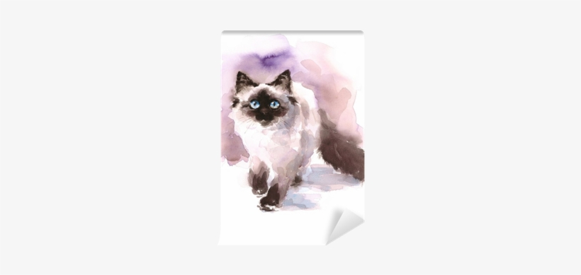 Watercolor Siamese Ragdoll Cat Walking Looking Up Hand - Watercolor Paintings Of Birman Cats, transparent png #553097