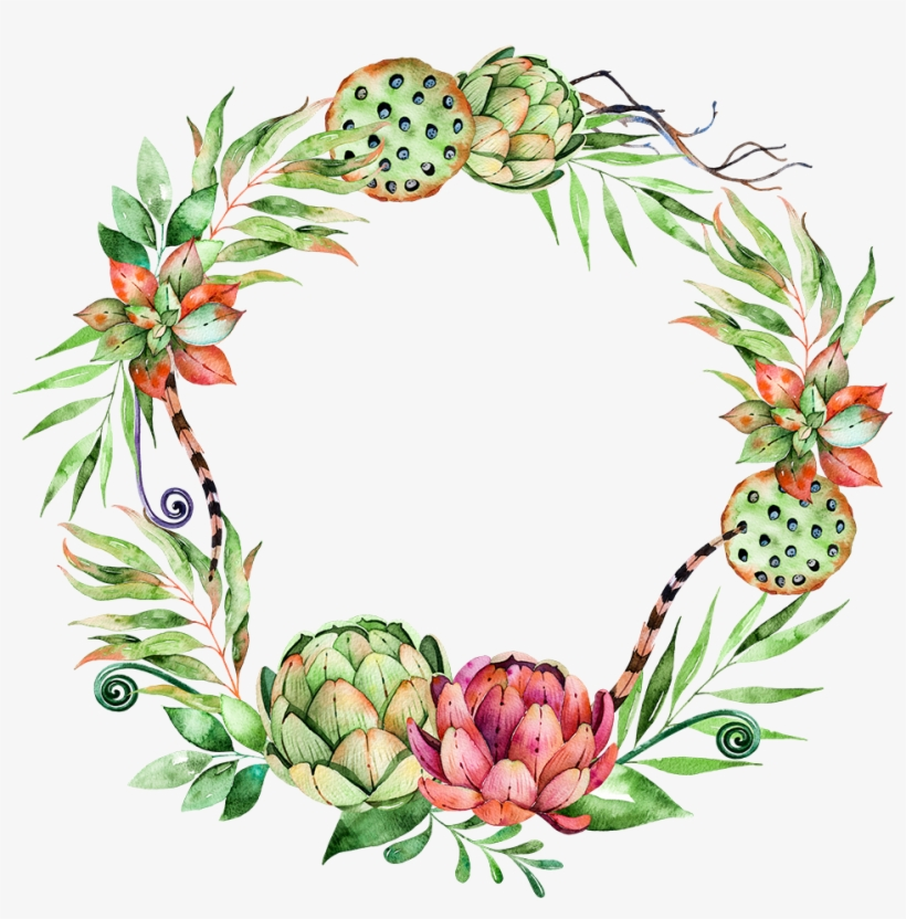 Svg Library Stock Flower Plant Wreath Illustration - Succulent Watercolor Free Png, transparent png #5522511