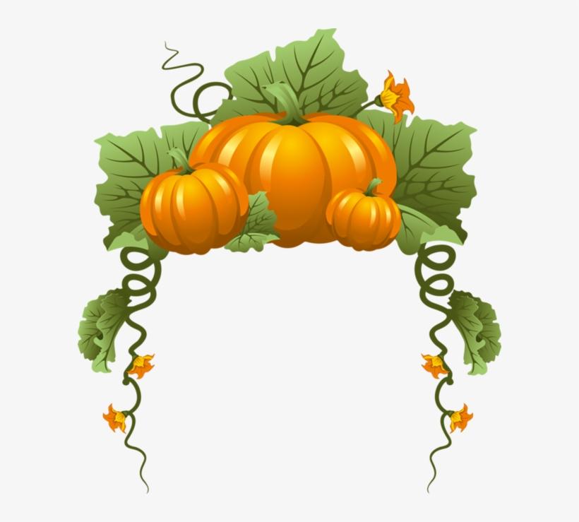 29 - Pumpkin Frame Clipart, transparent png #570327
