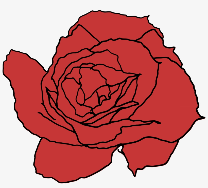 28 Collection Of Rose Png Drawing Drawing Free Transparent Png