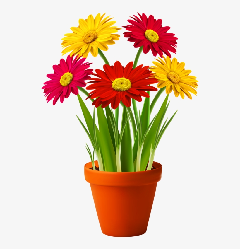 0 Floral Drawing, Flower Pots, Potted Flowers, Good - Flower With Pot Png, transparent png #583689