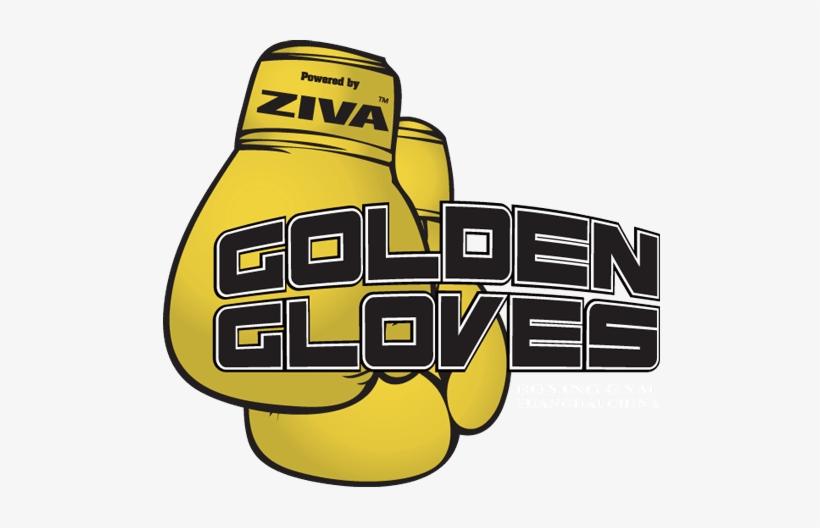 Golden Gloves Boxing Gym Hero Logo - Golden Gloves Boxing Logo, transparent png #583744