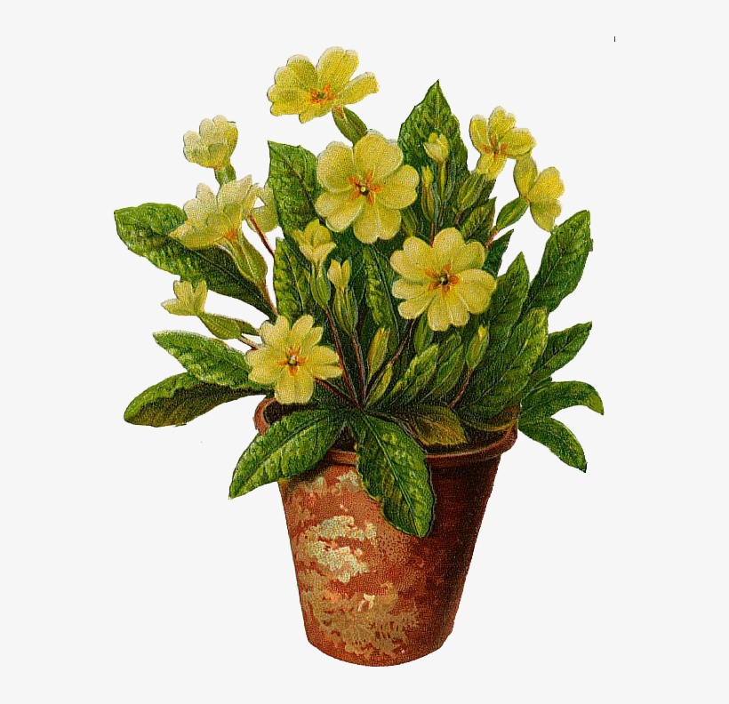 The Flower Pot Flowers Pot Free Download Clip Art Free - Tattoo Of Yellow Primrose, transparent png #583745
