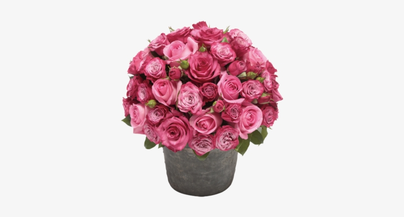 Rose Flower Pot Png - Pot Of Flowers Png, transparent png #583943