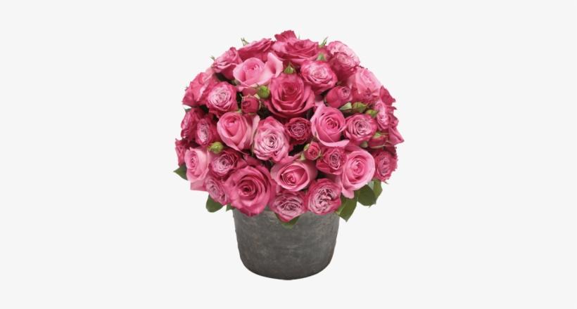 Rose Flower Pot Png - Pot Of Flowers Png, transparent png #583943