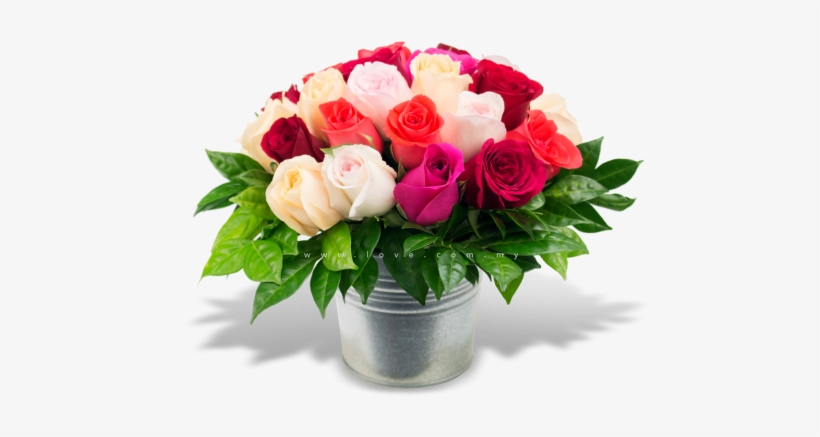 My Flower Pot - Flower With Pot Png, transparent png #584176