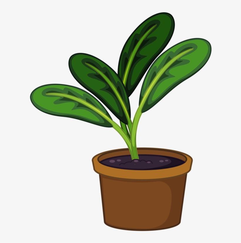 Flower Pot Png Garden Pinterest Clip Art - Plant In A Pot