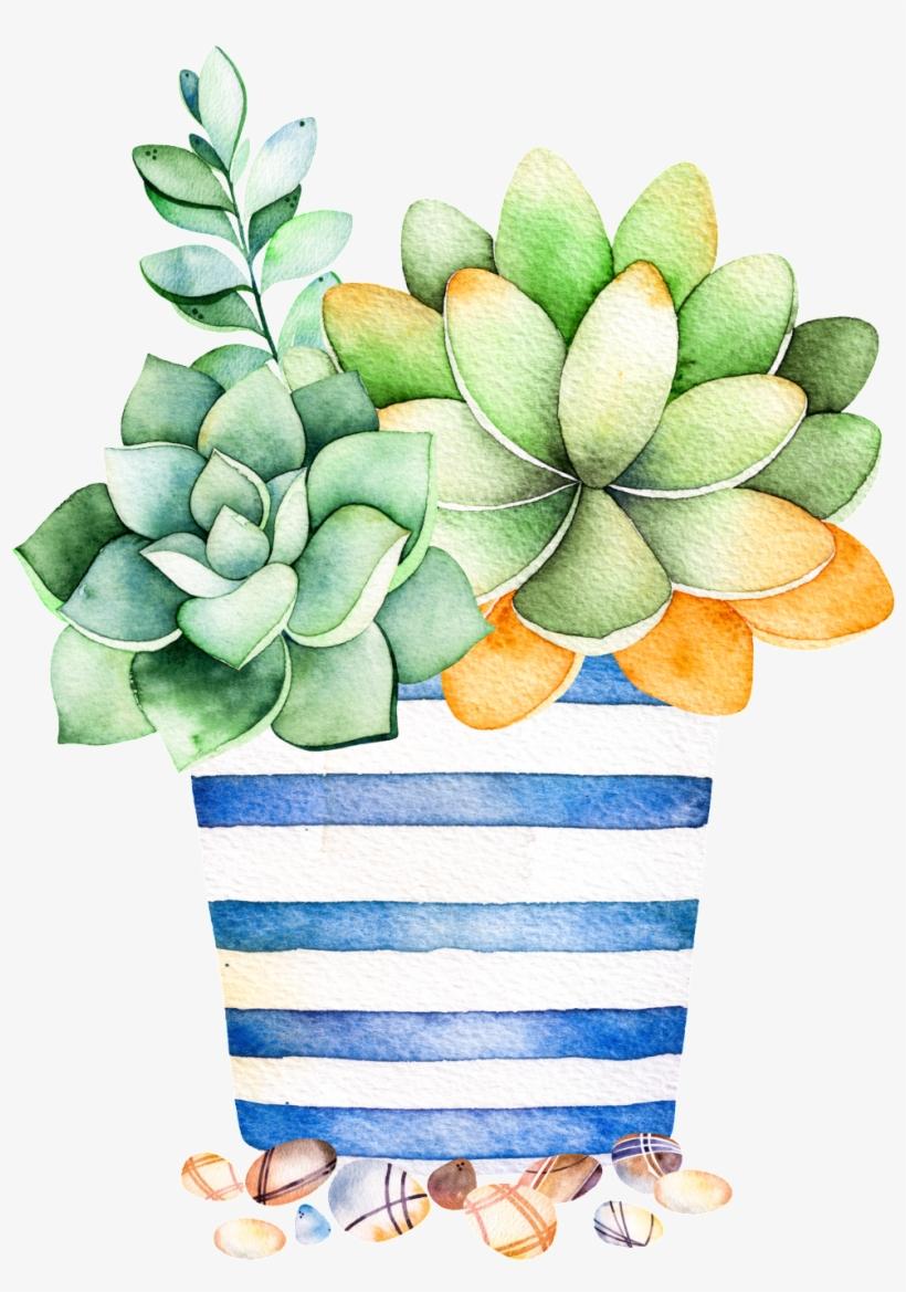 Blue Striped Flower Pot Cartoon Transparent Succulent Plant Succulent Watercolor Free Transparent Png Download Pngkey
