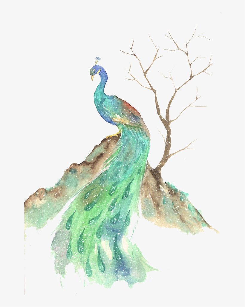 Bird Watercolor Painting Illustration - Watercolor Animals Peacock, transparent png #588163