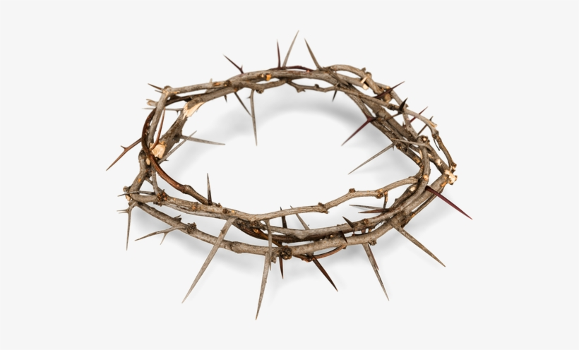 Crown Of Thorns Png, transparent png #589193