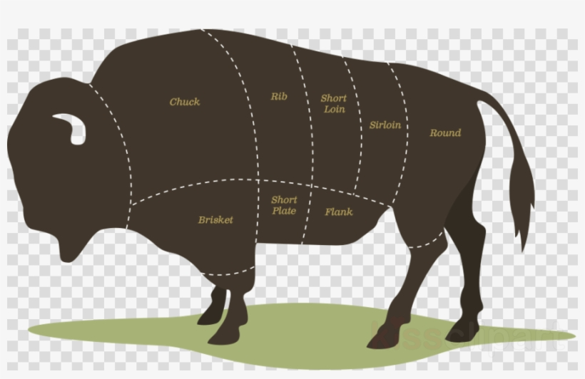 Bison Meat Cuts Clipart American Bison Steak Meat - North Dakota Farm Bison, transparent png #5848003