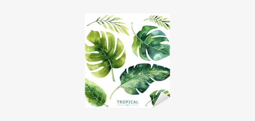 Hand Drawn Watercolor Tropical Plants Set - Jungle Plants Watercolor, transparent png #595644