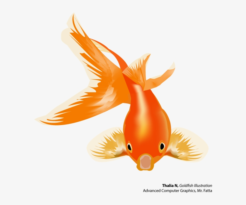 Goldfish And Betta - Gold Fish Vector Png, transparent png #596981