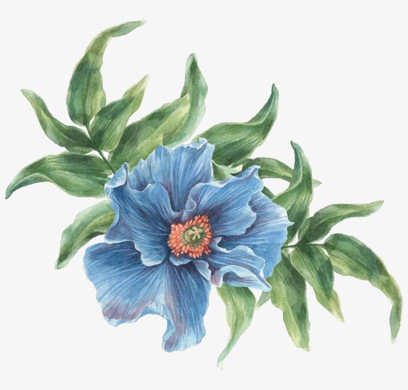 Фото, Автор ✿lili@ ✿ На Яндекс - Colorful Flowers Collage Watercolors Oval Ornament, transparent png #5939118