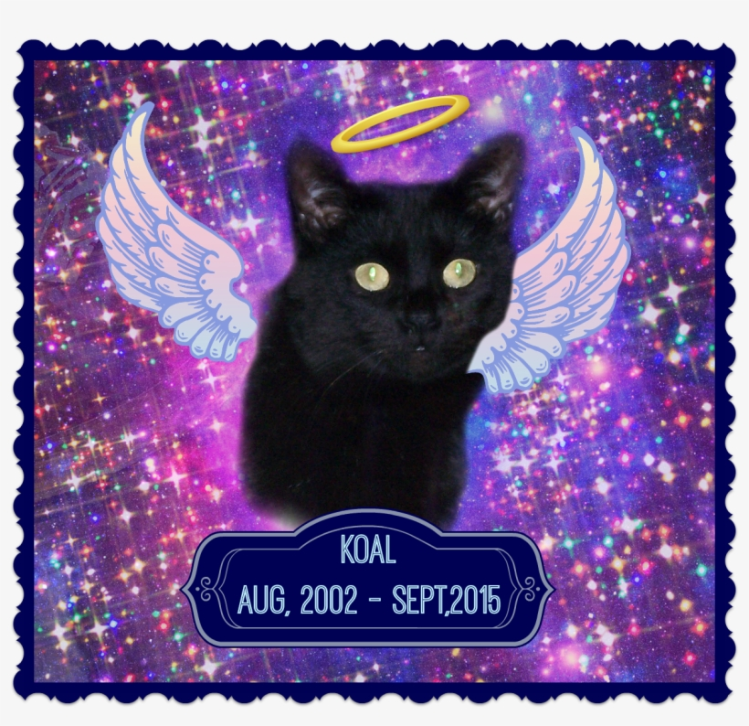 """I Didn't Know Koal Very Well, But His Passing Makes - Attaboy Clarence Square Car Magnet 3"""" X 3"""", transparent png #5976141"""