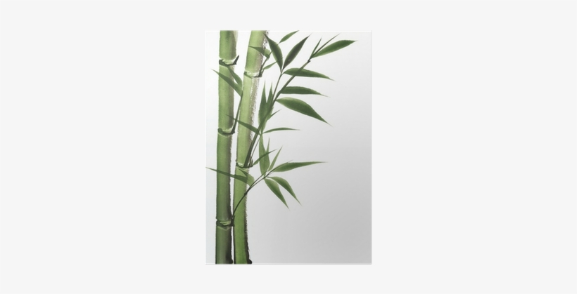 Bamboo Trees Painting, transparent png #60678