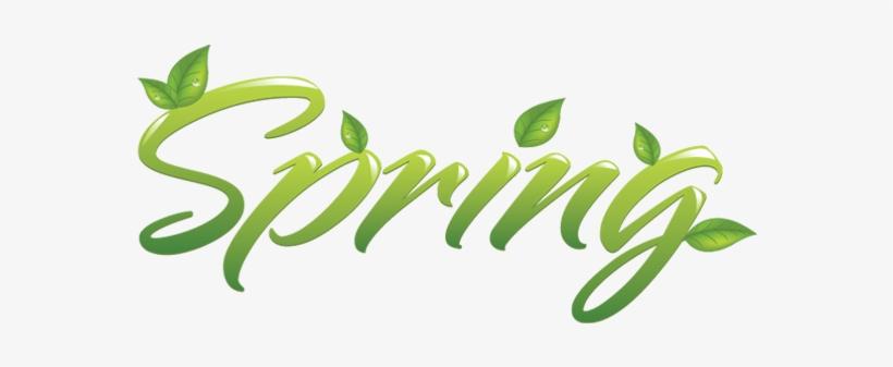 Transparent Pluspng Google Search - Spring Png, transparent png #60680