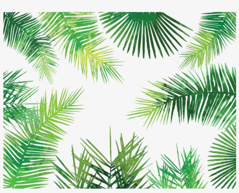 Watercolor Palm Leaves Png - Palm Leaves Pattern Png, transparent png #60797