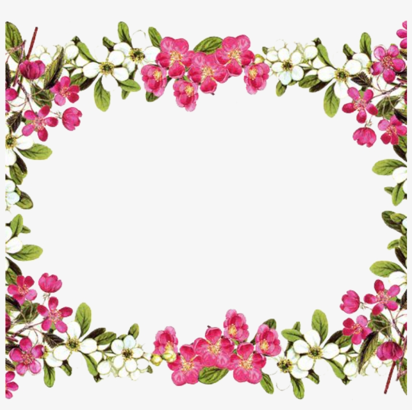 Flower Border Png Animal Clipart Hatenylo - Floral Borders And Frames, transparent png #61495