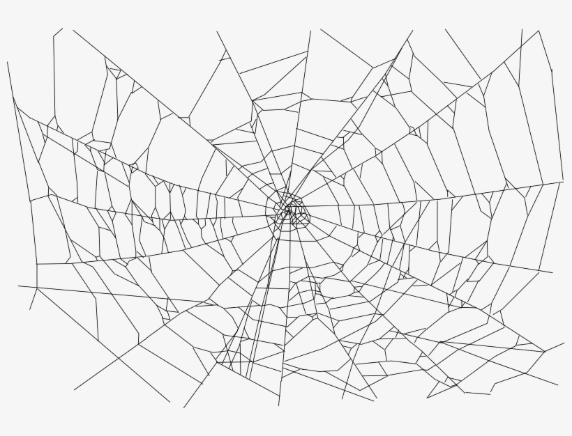Real Spider Web - Transparent Background Spider Web Png, transparent png #65539