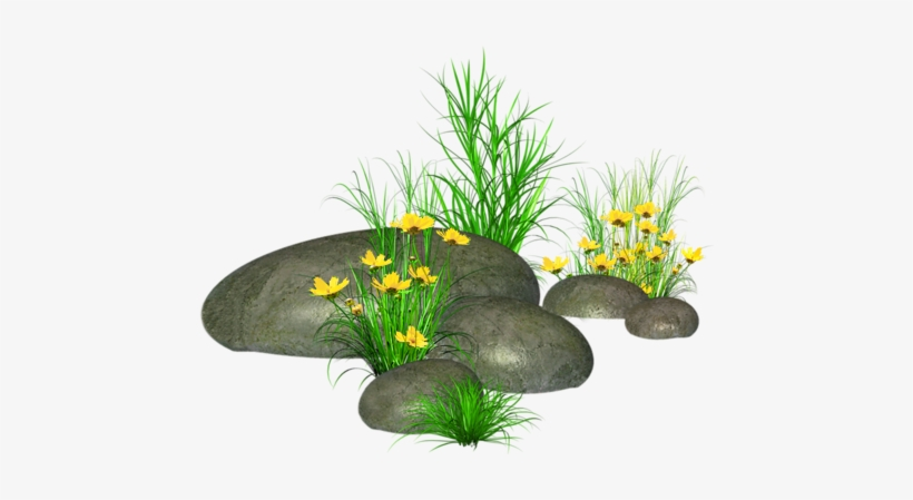 Stones With Grass And Yellow Flowers Png Picture - Stone With Grass Png, transparent png #67206