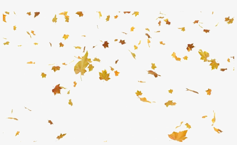 Falling Autumn Leaves Png Free Download - Falling Leaves Png Free, transparent png #68868