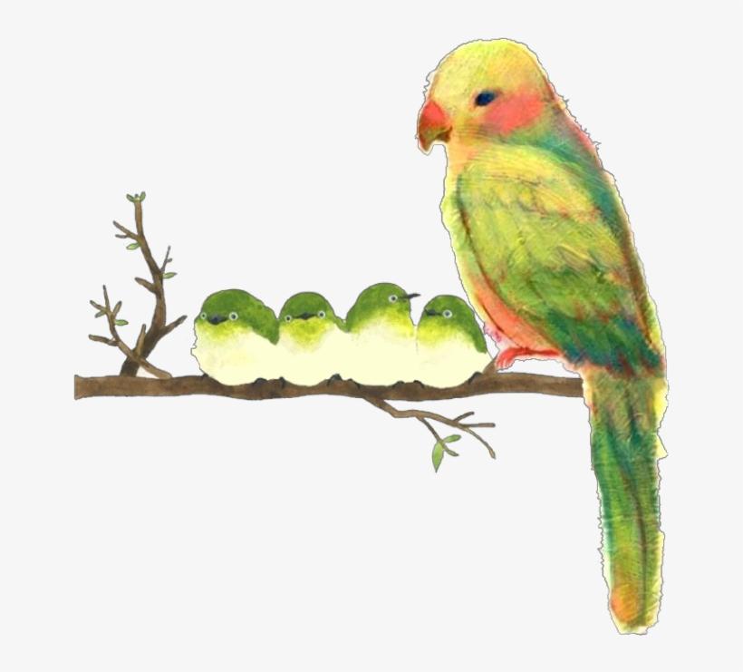 Ftestickers Watercolor Illustration Birds Parrots Cute - Watercolor Painting, transparent png #68908