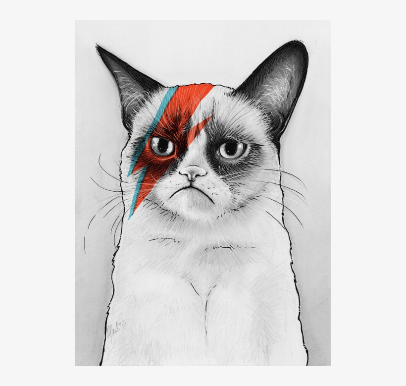 Click And Drag To Re-position The Image, If Desired - Grumpy Cat Bowie, transparent png #605420