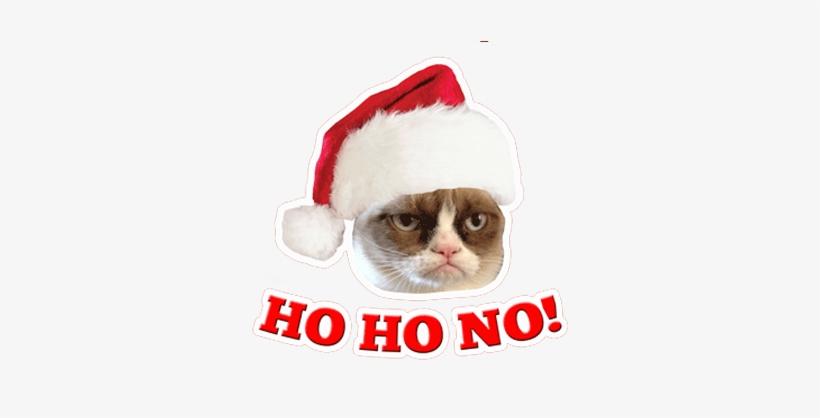 Grumpy Cat T Shirt - Official Grumpy Cat Quotes Hard Back Case, transparent png #605457