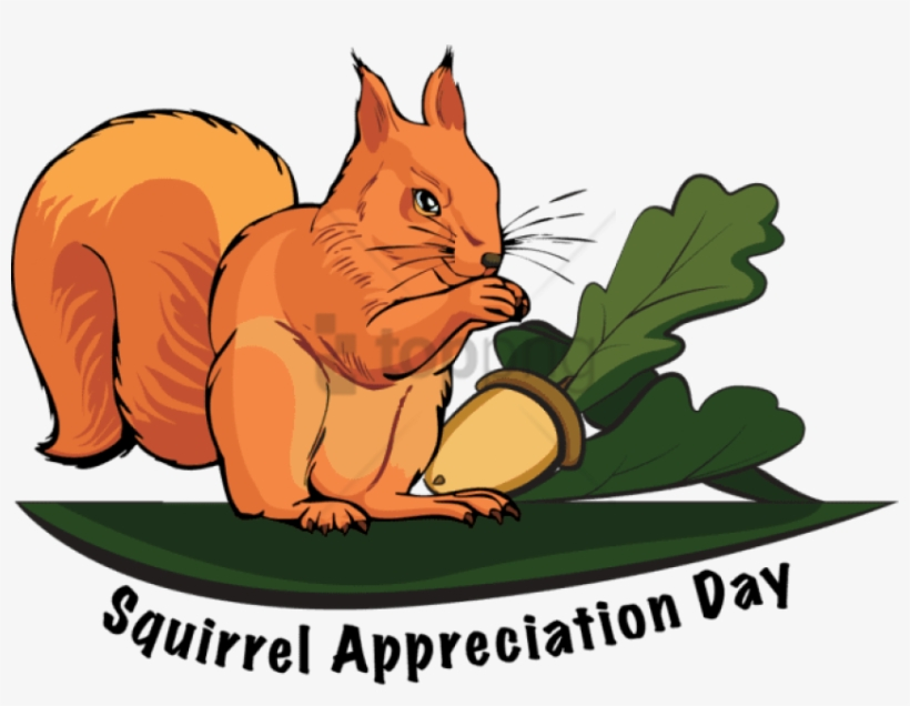 Information And Clip Art For Squirrel Appreciation - Squirrel Appreciation Day 2017, transparent png #606888