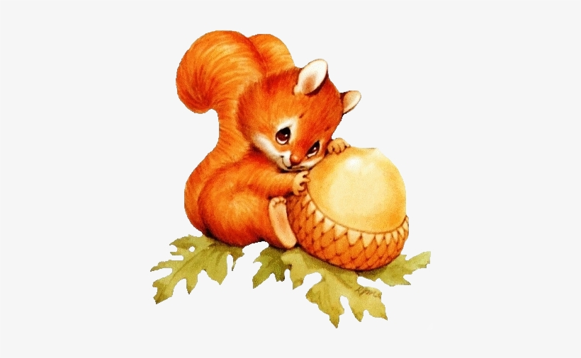 Image result for cute squirrel clipart