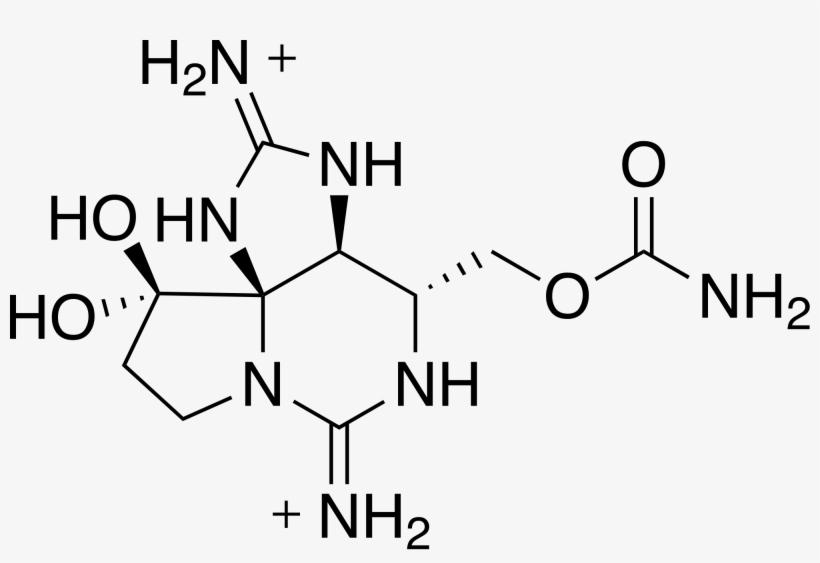 Courtesy Of Wikipedia Commons - 1 2 3 4 Butanetetracarboxylic Acid, transparent png #6038589
