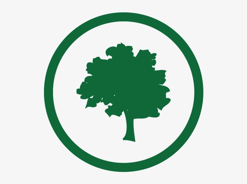 Swillington Organic Farm - Organic Farming Logo Png, transparent png #6074590