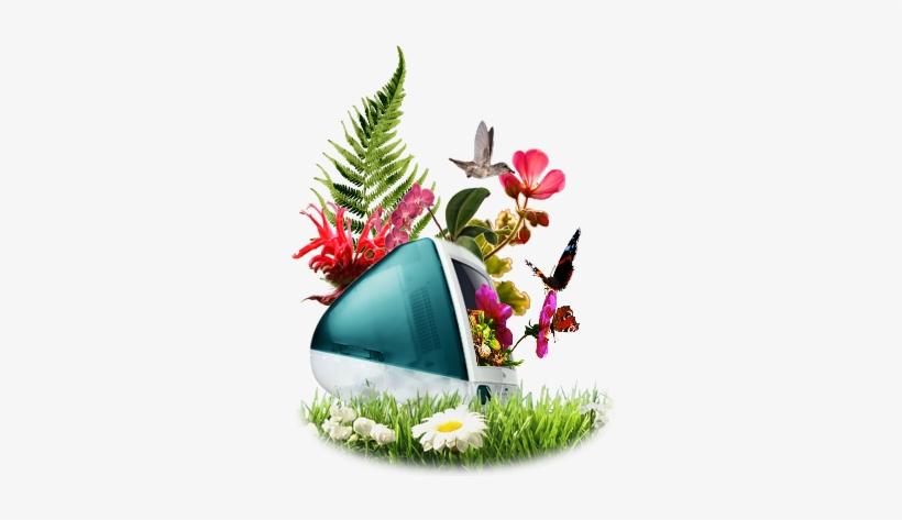 Graphic Designs Company - Mumbai Graphic Design, transparent png #613506
