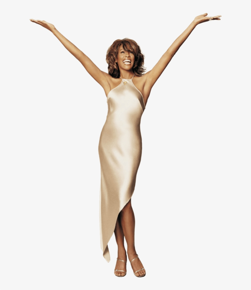 Download - Whitney Houston Logo Png, transparent png #6166853