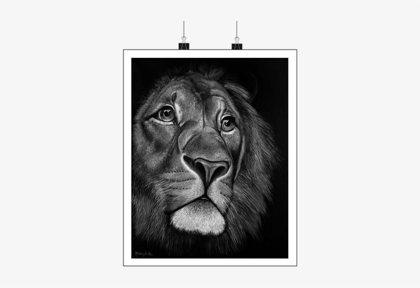 Black & White - Lion Face Painting On Canvas, transparent png #620486