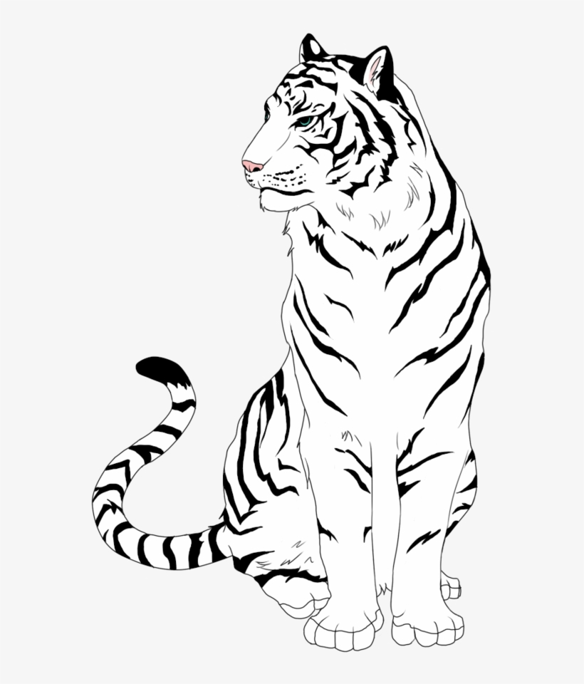 White Tiger Clipart Easy - Tiger Free Line Art - Free ...