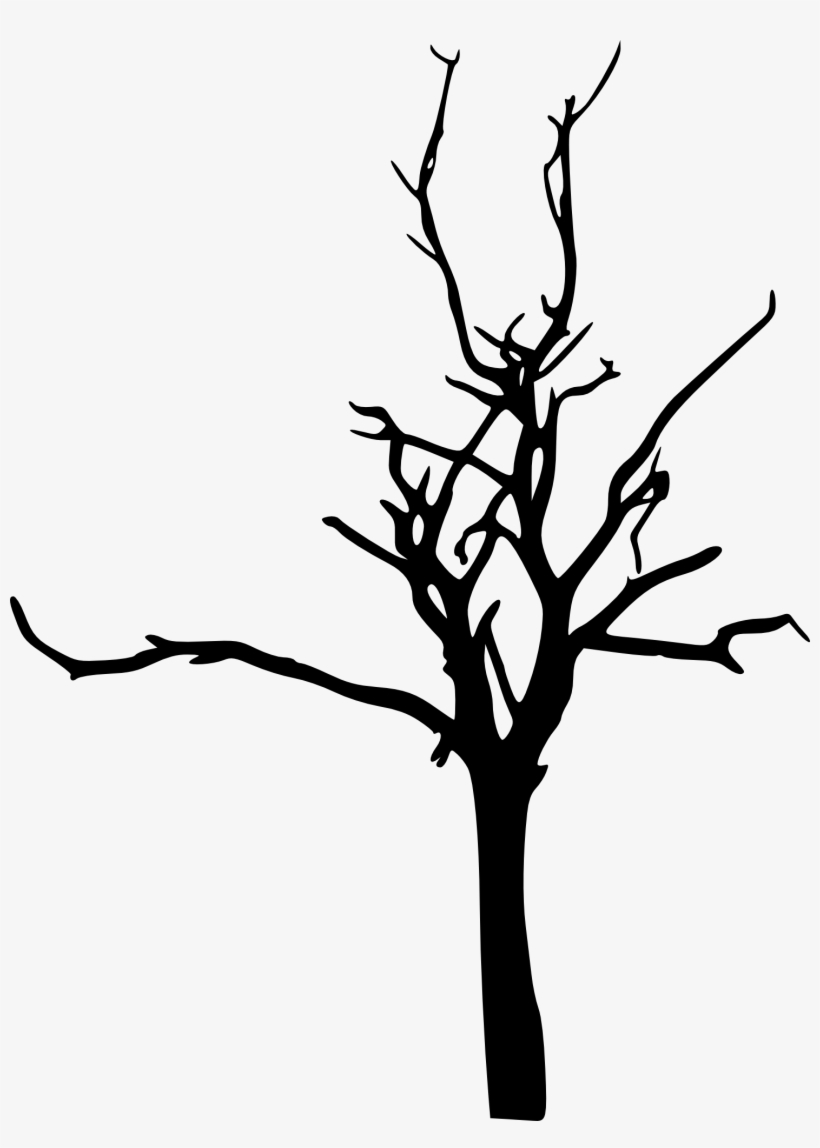 Drawing Branches Scene - Bare Tree Tree Silhouette Png, transparent png #621475