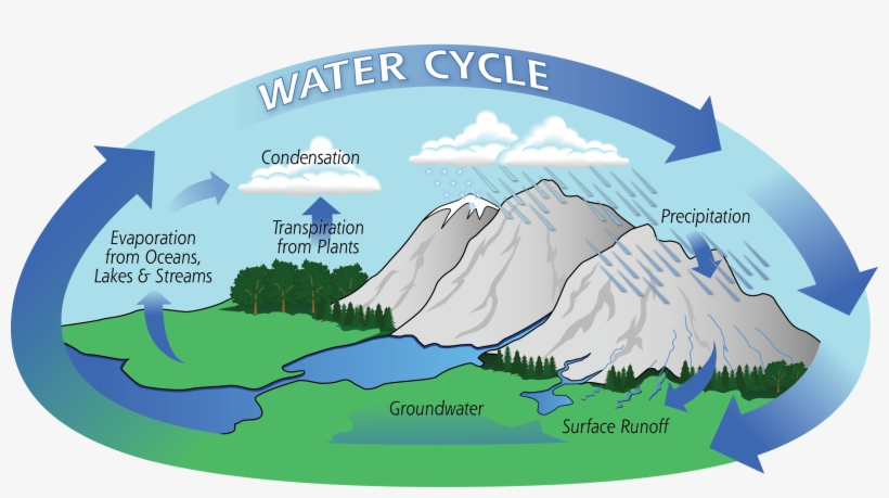 Diagram Of The Water Cycle Showing Evaporation, Condensation, - Water Cycle Process, transparent png #622182