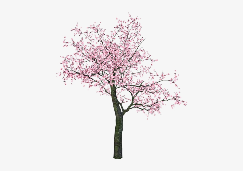 Watercolor Trees - Spring Tree Clip Art, transparent png #622939
