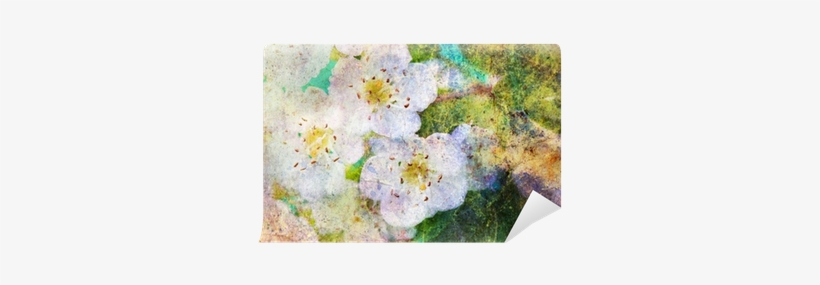 Spring White Flowers And Messy Watercolor Splatter - Komar Wall Mural, transparent png #625838
