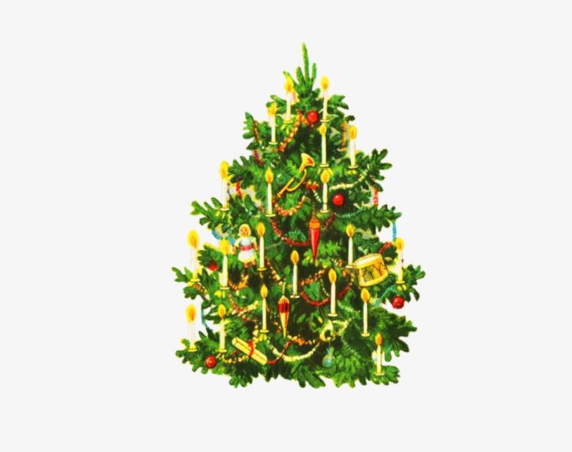 Oldfashioned Decorated Christmas Tree - Vintage Christmas Cards Christmas Tree, transparent png #626052