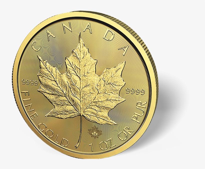 1 Oz Canadian Gold Maple Leaf Coins - Canadian Gold Maple Leaf, transparent png #6206913