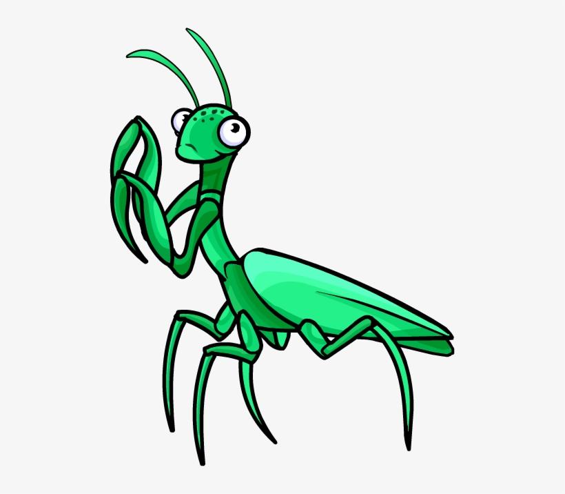 Norman Swarm Praying Mantis Praying Mantis Clipart Transparent