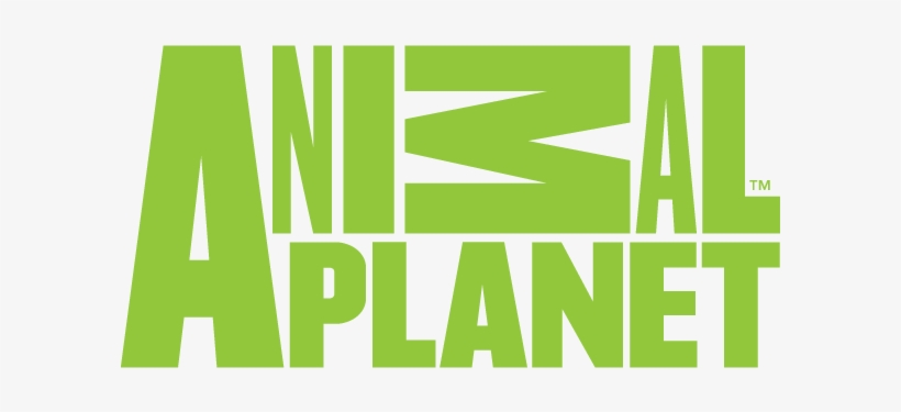 Animal Planet-nw - Animal Planet Logo 2016, transparent png #6357462