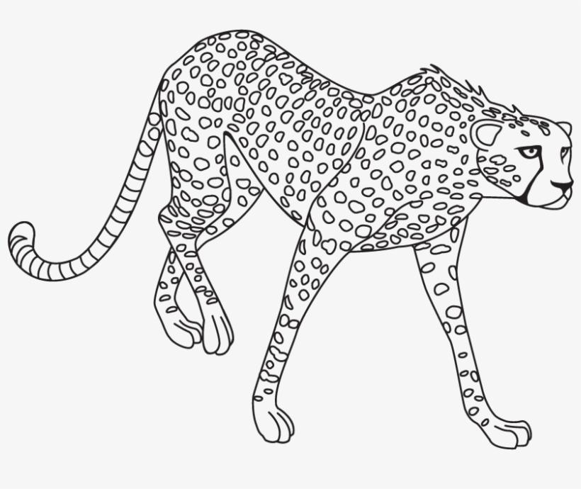 Jaguar Clipart