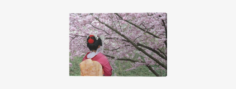 Geisha And Blooming Sakura Tree Canvas Print • Pixers® - Japanese Old Festival With Cherry Blossoms, transparent png #654056